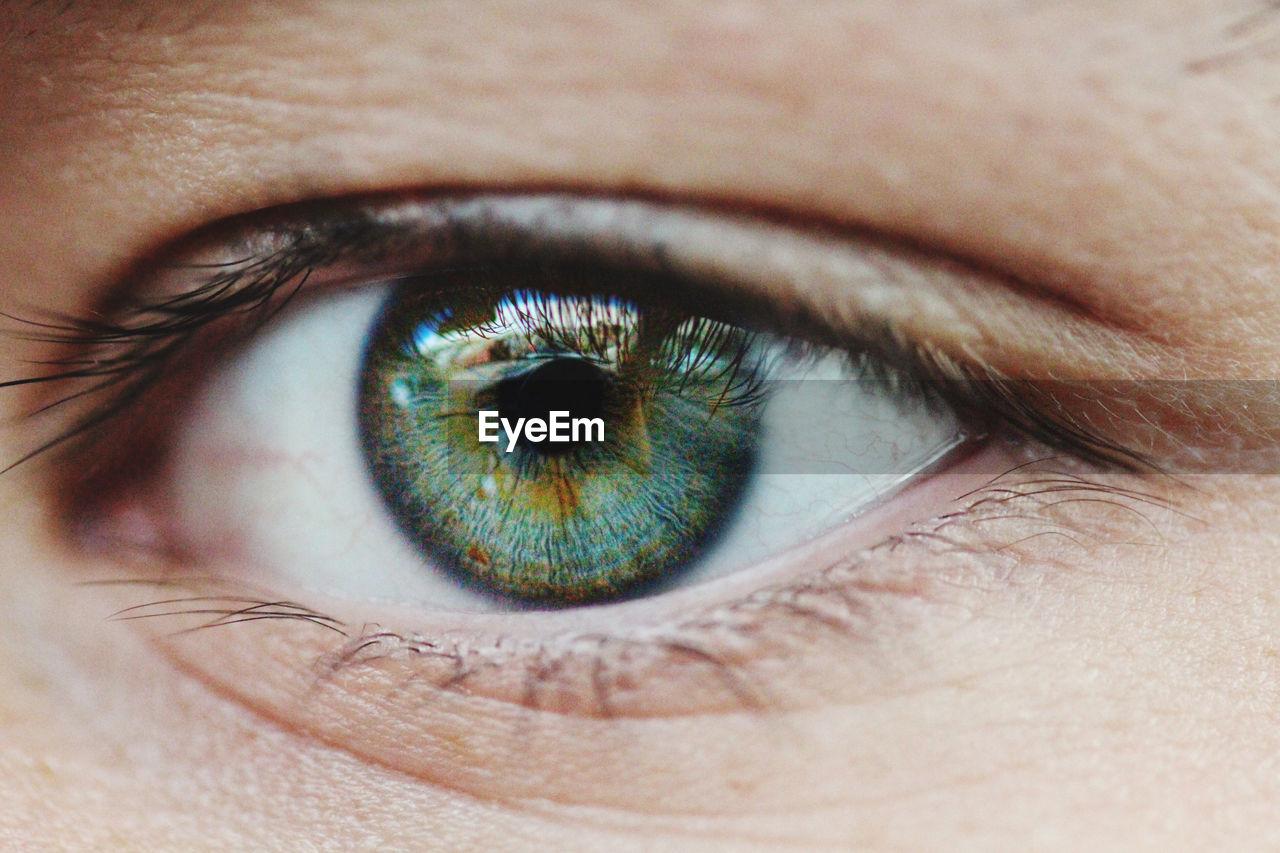 Extreme close-up of man eye