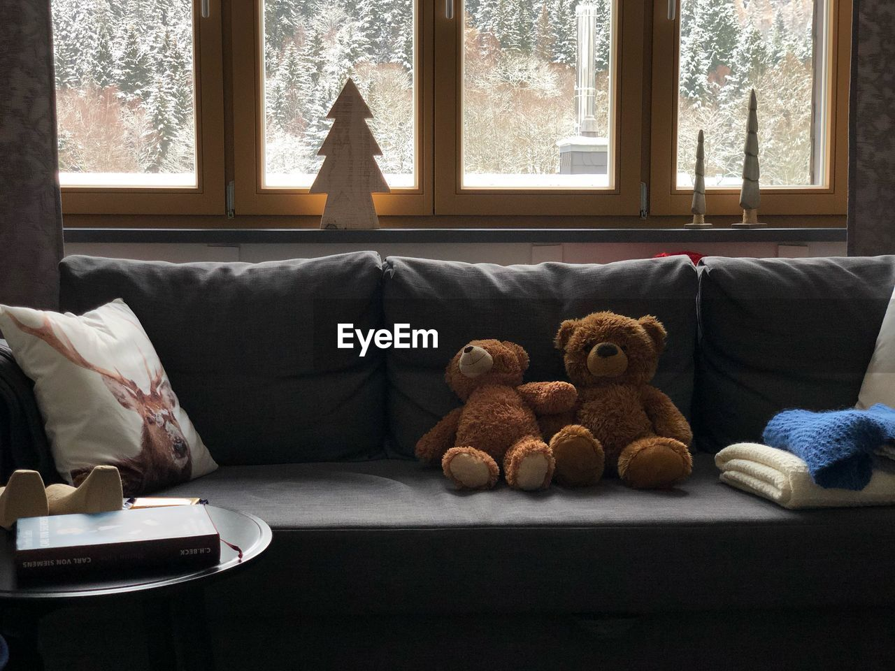 stuffed toy, window, toy, teddy bear, furniture, indoors, no people, domestic room, pillow, day, home interior, sofa, curtain, absence, glass - material, animal representation, stuffed, transparent, living room, softness, electric lamp