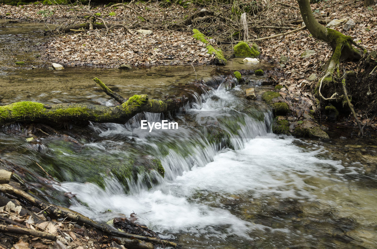 nature, tranquil scene, no people, beauty in nature, water, motion, waterfall, forest, outdoors, day, tranquility, scenics, tree