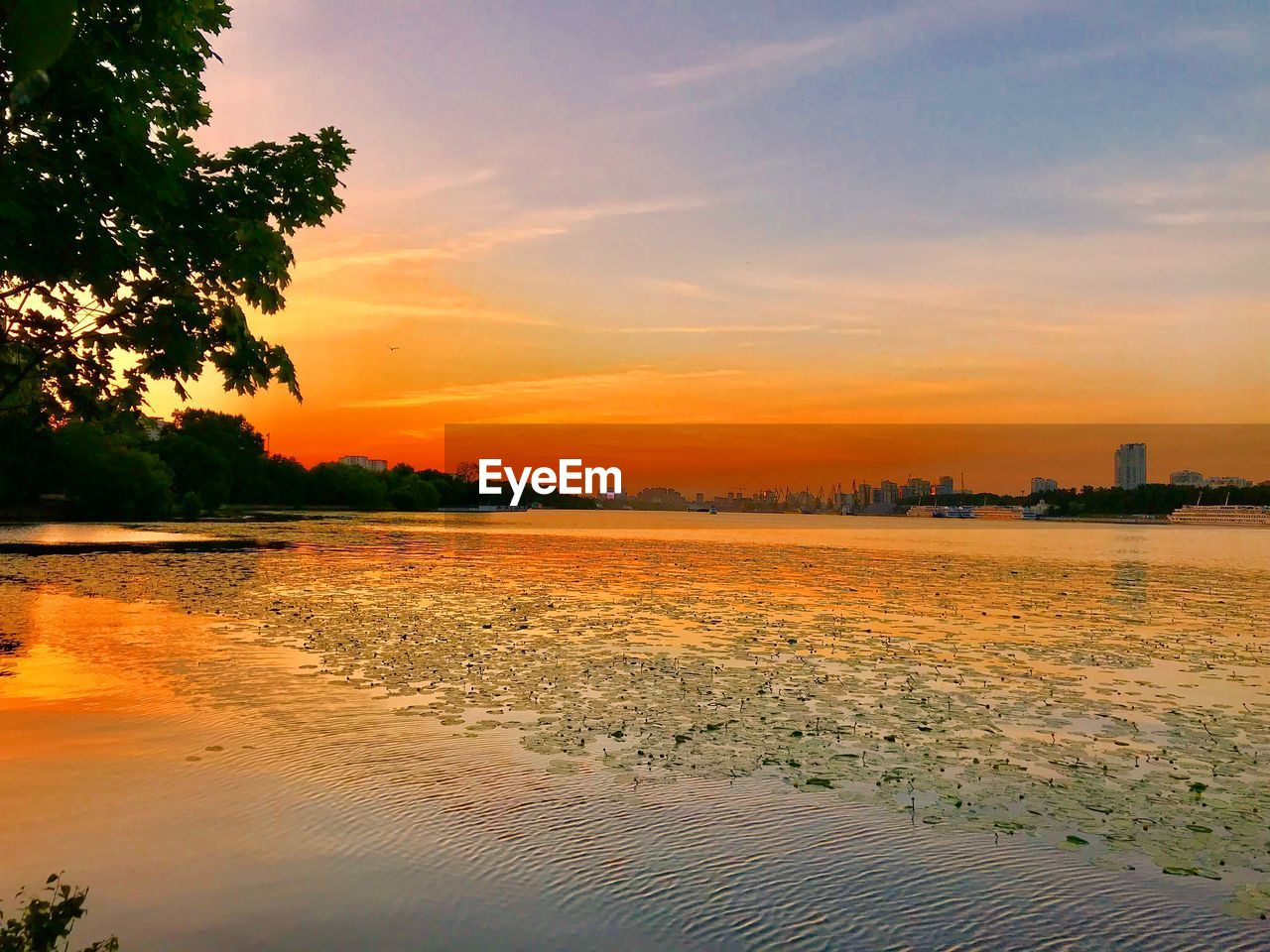 sunset, water, sky, orange color, beauty in nature, tranquility, scenics - nature, tranquil scene, cloud - sky, reflection, nature, no people, tree, plant, idyllic, waterfront, outdoors, lake
