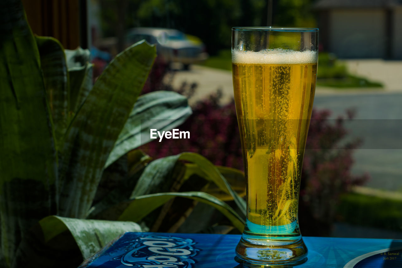 drink, refreshment, food and drink, glass, table, focus on foreground, freshness, drinking glass, beer, alcohol, household equipment, close-up, beer - alcohol, glass - material, beer glass, transparent, still life, no people, leaf