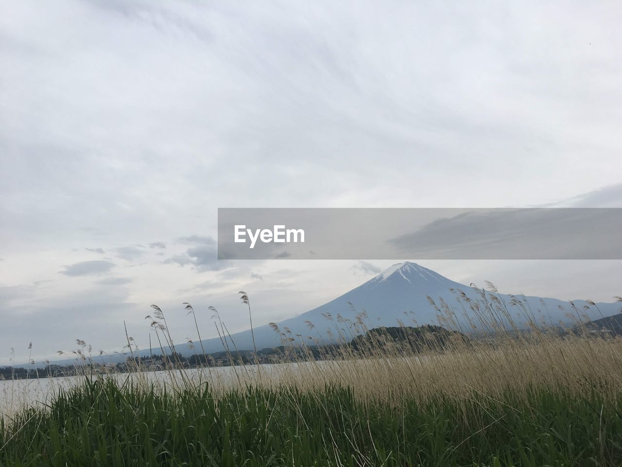 sky, mountain, cloud - sky, beauty in nature, plant, scenics - nature, grass, land, nature, tranquil scene, landscape, non-urban scene, environment, no people, tranquility, day, field, outdoors, snow, mountain range, snowcapped mountain, mountain peak