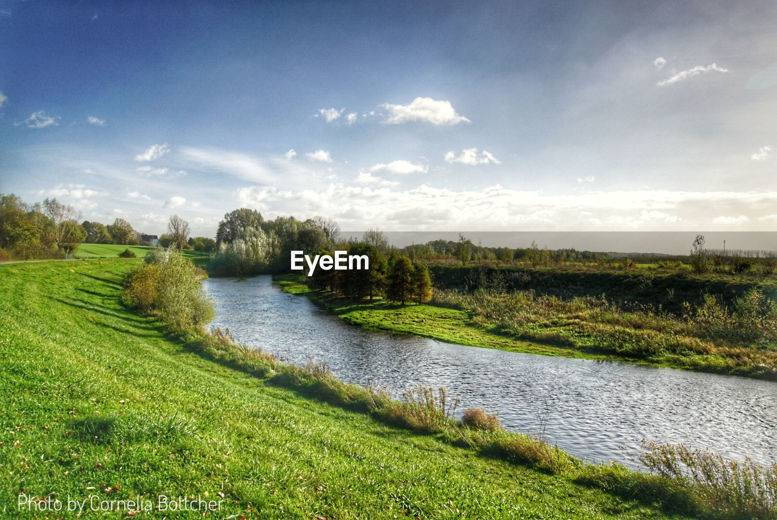 grass, nature, tranquility, beauty in nature, tranquil scene, scenics, water, green color, growth, landscape, tree, field, sky, no people, outdoors, river, day, cloud - sky