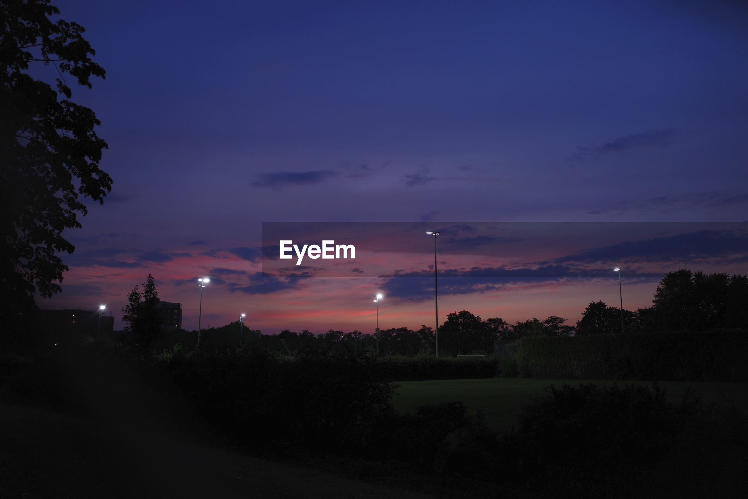 Scenic view of trees and floodlights over soccer pitches, against sky at dusk