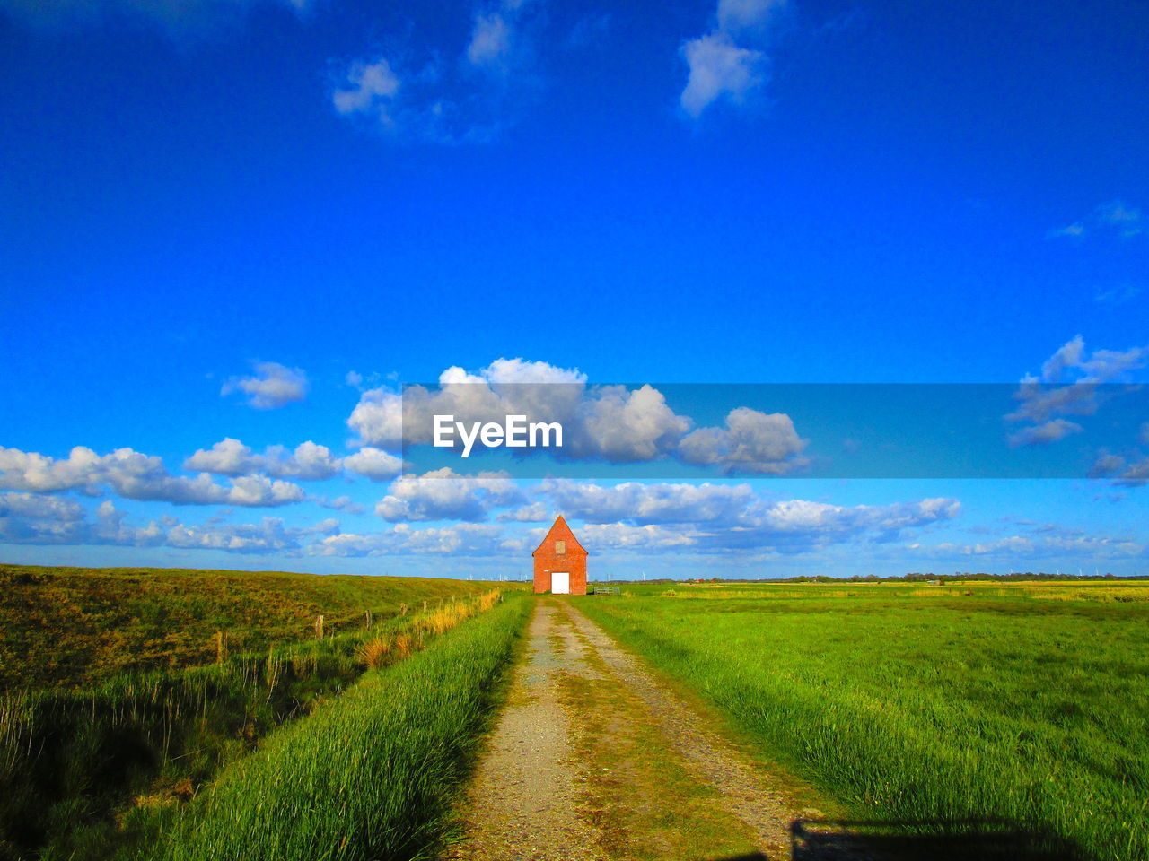 sky, land, cloud - sky, blue, landscape, field, direction, grass, the way forward, plant, environment, nature, scenics - nature, rural scene, beauty in nature, tranquility, tranquil scene, road, day, no people, outdoors, diminishing perspective