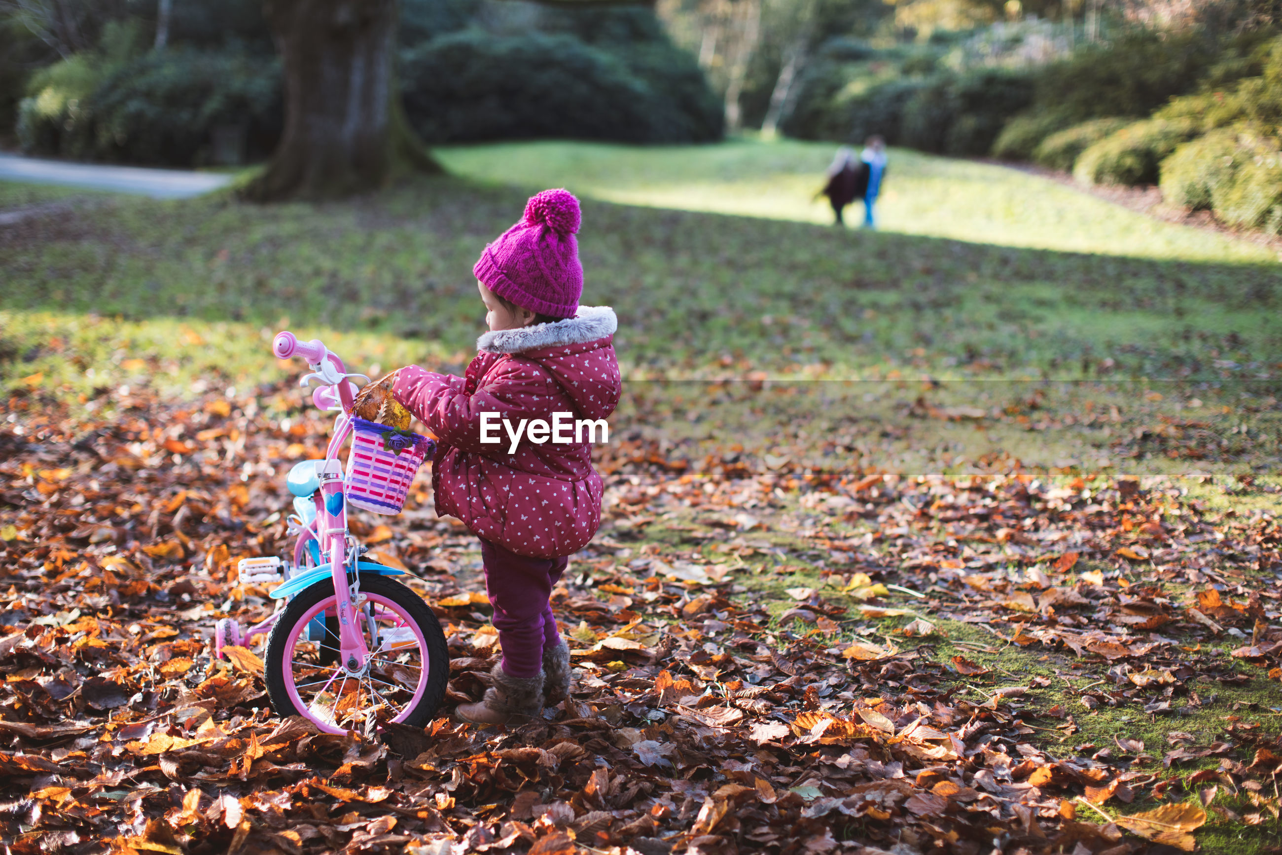 Full length of girl with bicycle standing in park