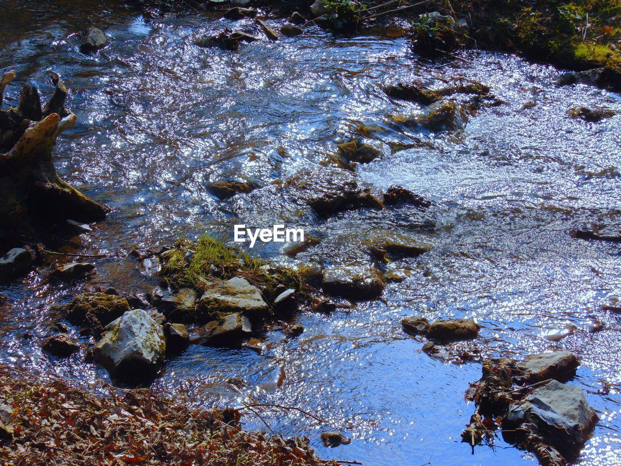 Rocks in stream