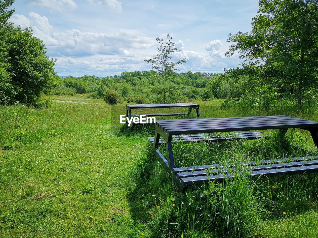 plant, green color, tree, land, grass, nature, growth, field, sky, day, beauty in nature, bench, seat, no people, non-urban scene, empty, landscape, outdoors, cloud - sky, scenics - nature, park bench