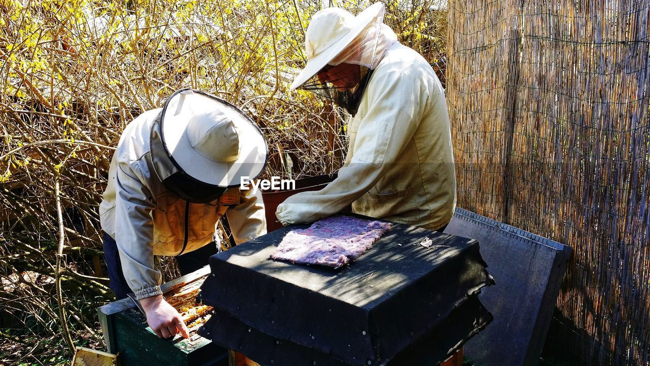 View Of Beekeepers Working On Outdoors