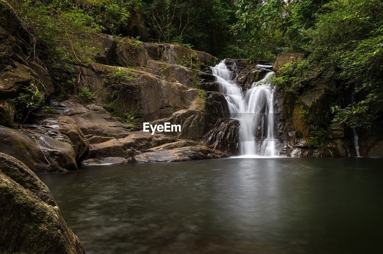 water, waterfall, motion, long exposure, scenics - nature, beauty in nature, forest, tree, flowing water, rock, land, nature, blurred motion, plant, no people, rock - object, environment, solid, power, flowing, power in nature, outdoors, rainforest, falling water