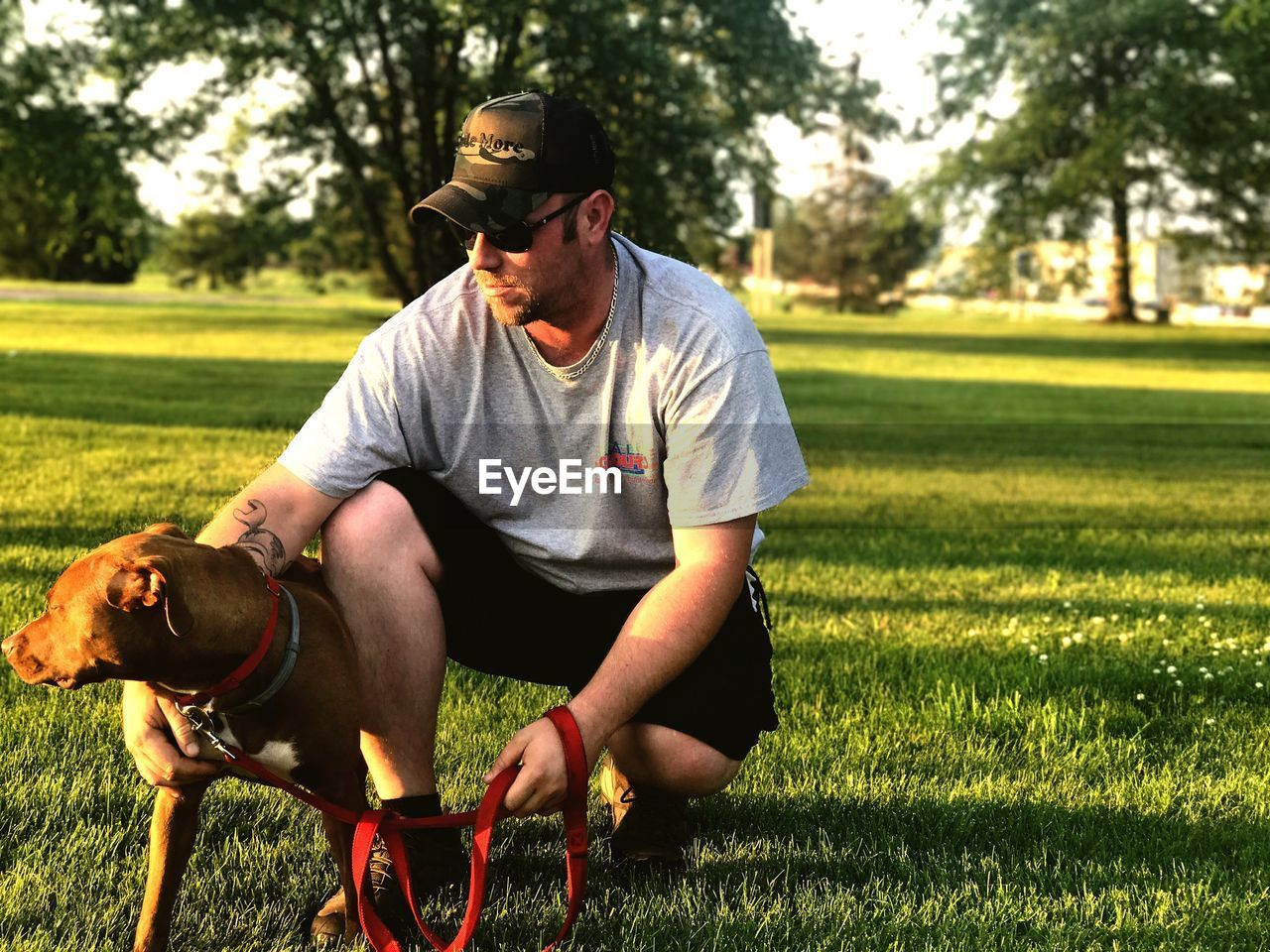 Man stroking dog while crouching on field