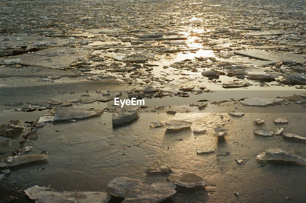 Surface level of frozen lake