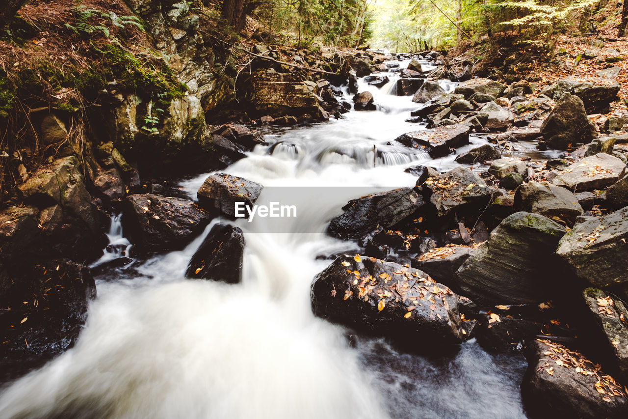 water, long exposure, rock, motion, solid, beauty in nature, flowing water, rock - object, blurred motion, scenics - nature, waterfall, forest, no people, nature, flowing, land, tree, day, river, outdoors, stream - flowing water, power in nature, falling water