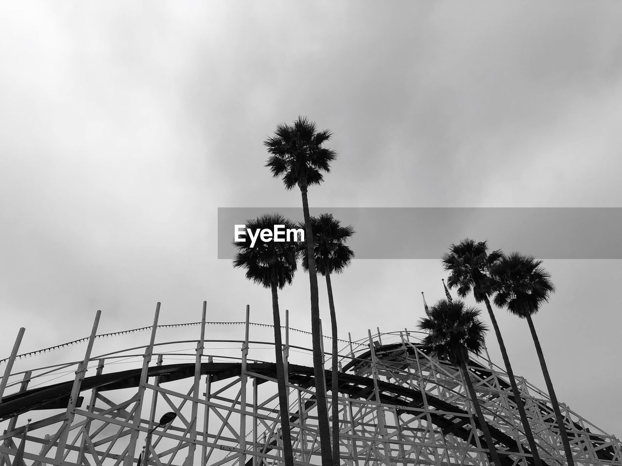 sky, low angle view, amusement park, cloud - sky, amusement park ride, palm tree, built structure, nature, architecture, arts culture and entertainment, tropical climate, day, no people, tree, outdoors, ferris wheel, tall - high, plant, rollercoaster, dusk, fairground