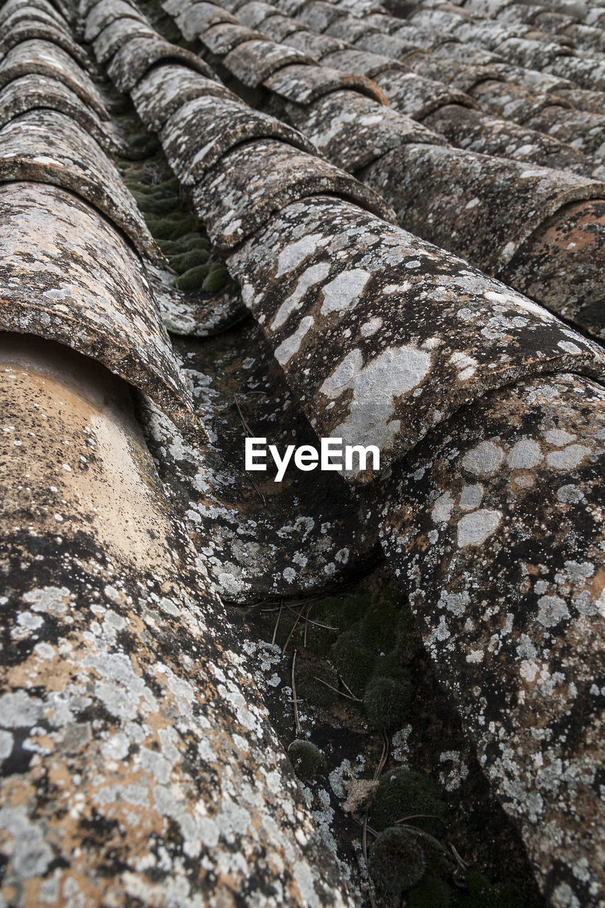 full frame, backgrounds, no people, rock, close-up, day, textured, pattern, solid, rock - object, nature, rock formation, outdoors, rough, plant, built structure, geology, selective focus, high angle view, architecture, eroded, layered