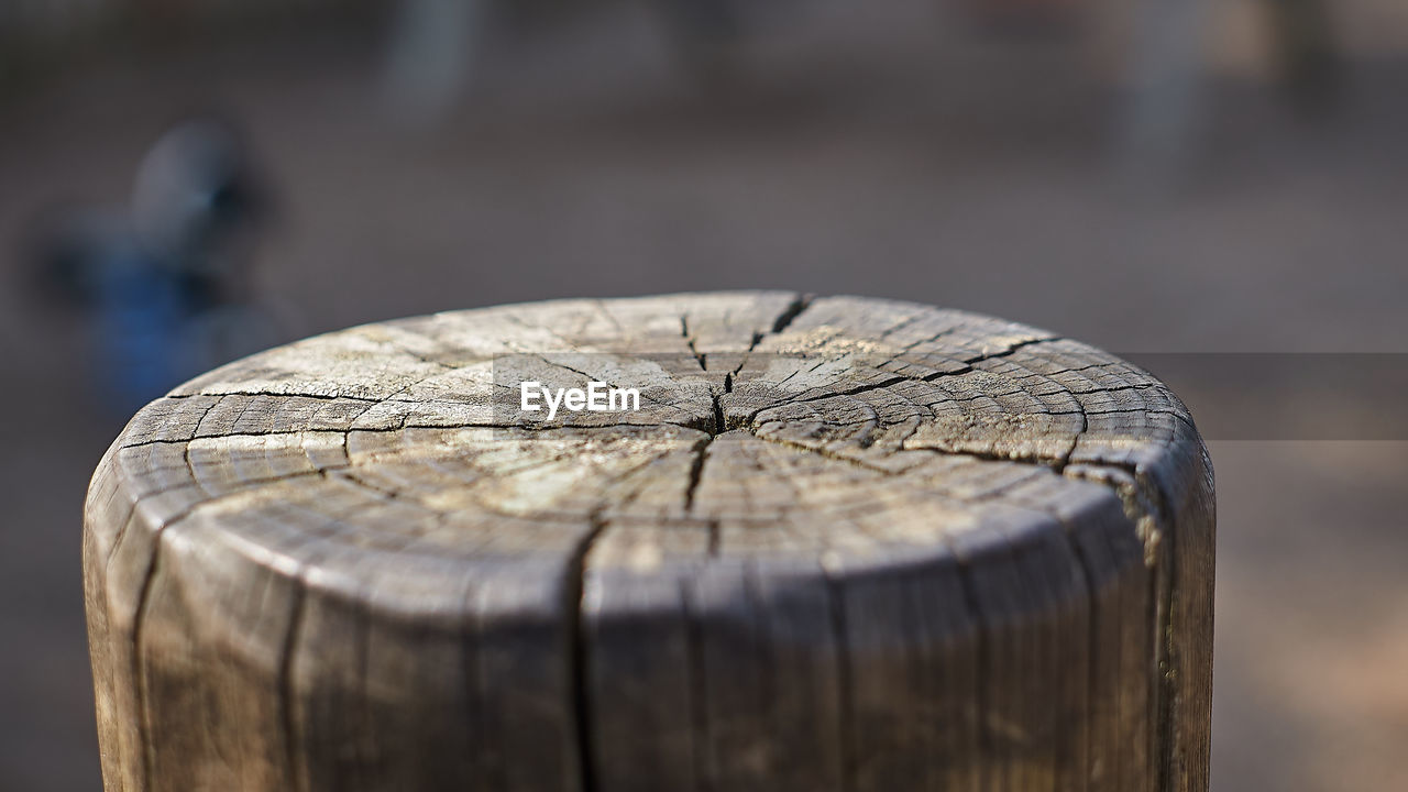 wood - material, focus on foreground, bark, tree stump, close-up, day, no people, selective focus, wood, nature, timber, tree, outdoors, textured, cracked, tree ring, pattern, log, deforestation, cross section, wood grain, wooden post
