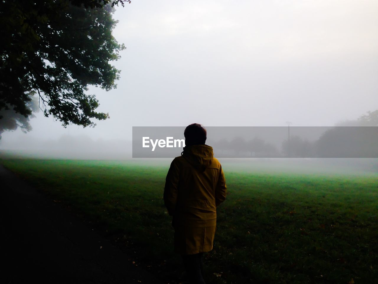 Rear View Of Person Standing On Grassy Field During Foggy Weather