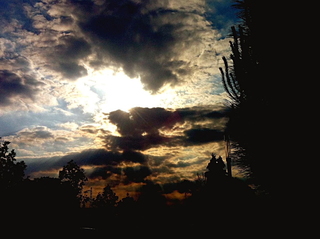 silhouette, cloud - sky, sky, sunset, nature, scenics, beauty in nature, outdoors, tranquil scene, no people, sunlight, sun, tranquility, low angle view, tree, day