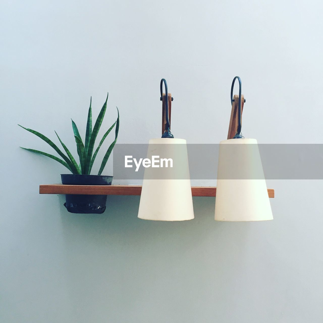 Close Up Of Lighting Equipment On Shelf With Potted Plant Against Wall