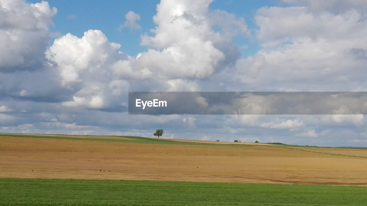 cloud - sky, sky, landscape, environment, tranquil scene, scenics - nature, land, beauty in nature, field, tranquility, grass, day, nature, horizon, no people, green color, plant, horizon over land, non-urban scene, idyllic, outdoors