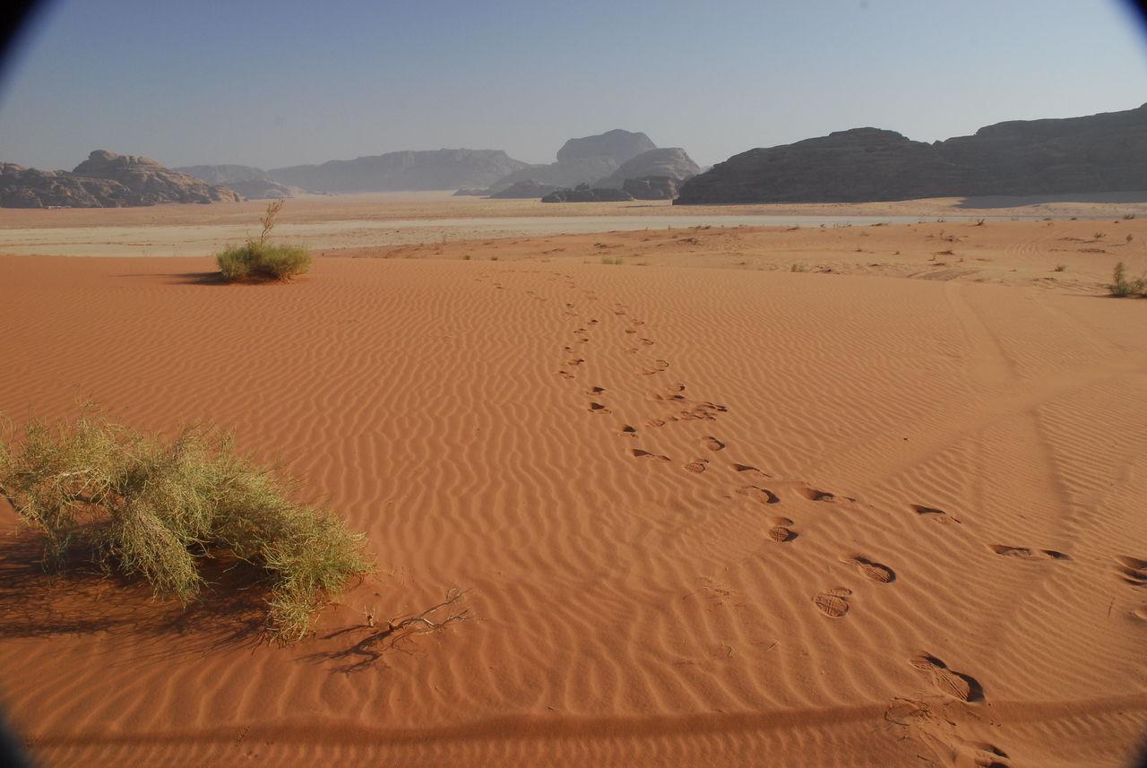 SCENIC VIEW OF SAND DUNE