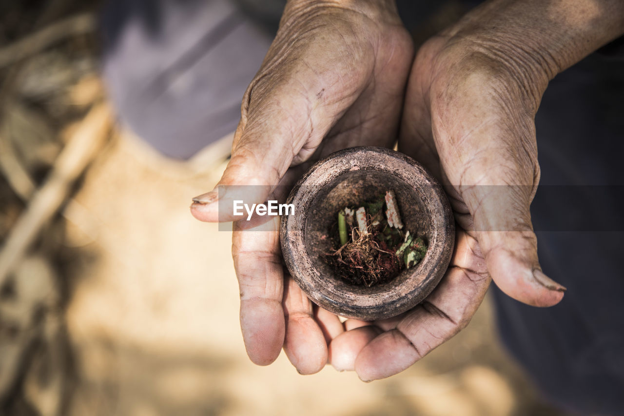 Cropped Hands Holding Herb In Mortar