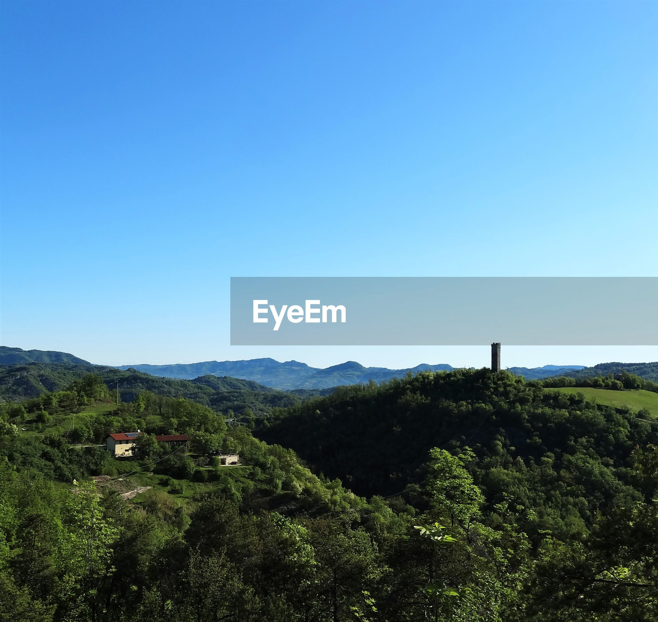 SCENIC VIEW OF TREES ON MOUNTAIN AGAINST CLEAR BLUE SKY