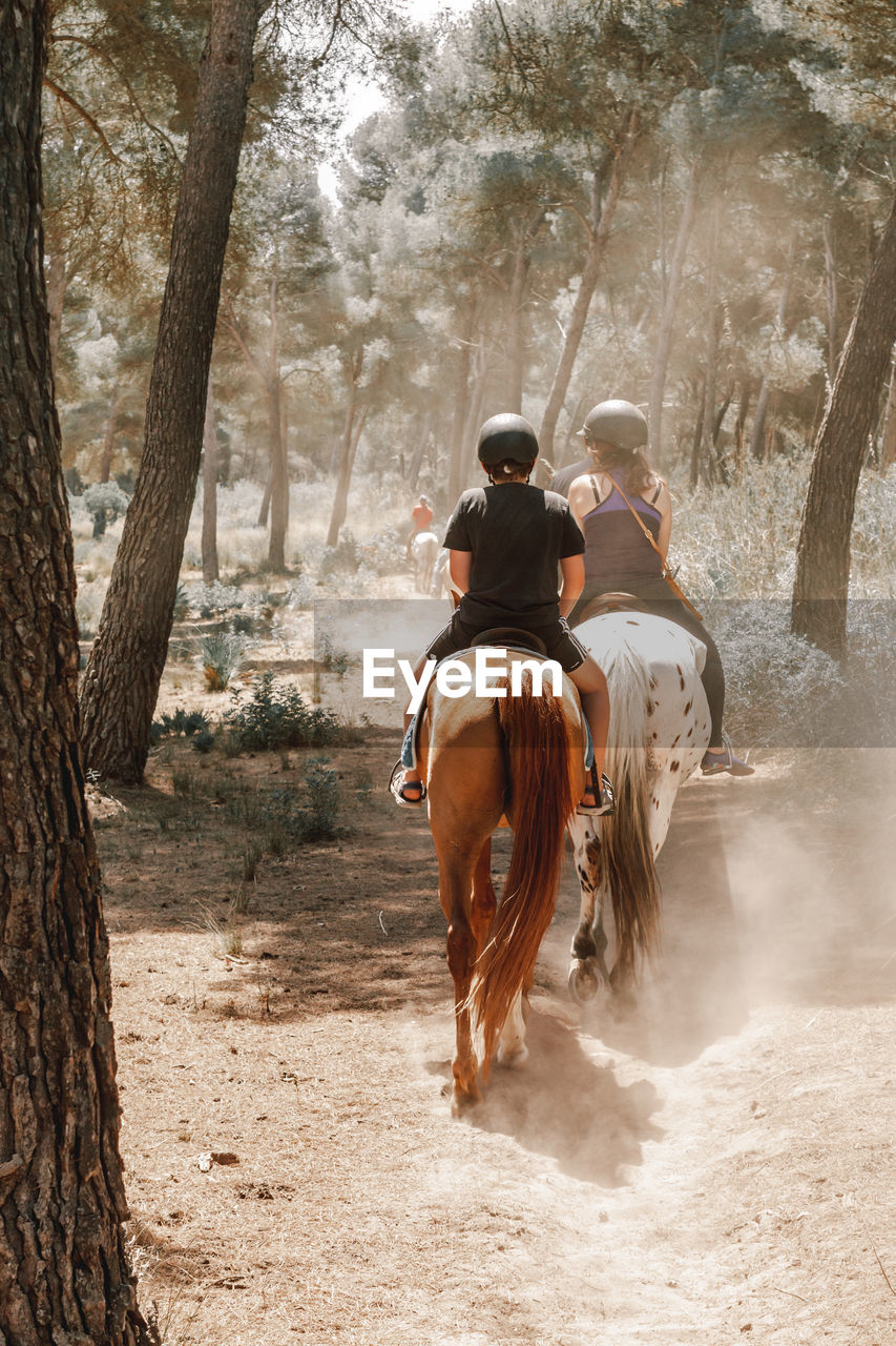 REAR VIEW OF PEOPLE RIDING HORSE IN PARK