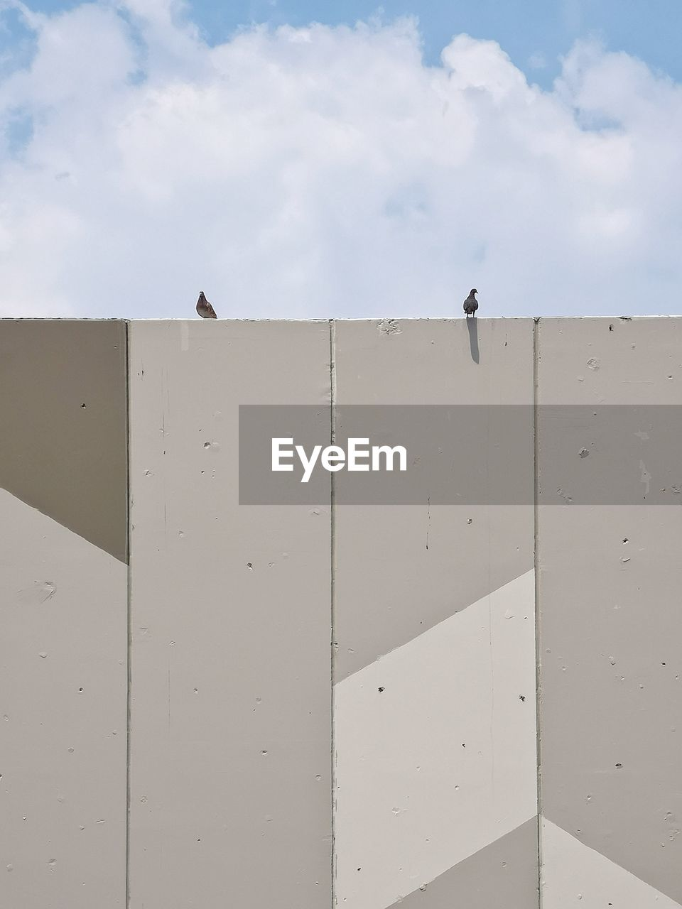 bird, sky, architecture, built structure, cloud - sky, vertebrate, animal themes, animal, animals in the wild, wall - building feature, no people, animal wildlife, day, building exterior, nature, low angle view, group of animals, outdoors, wall, perching