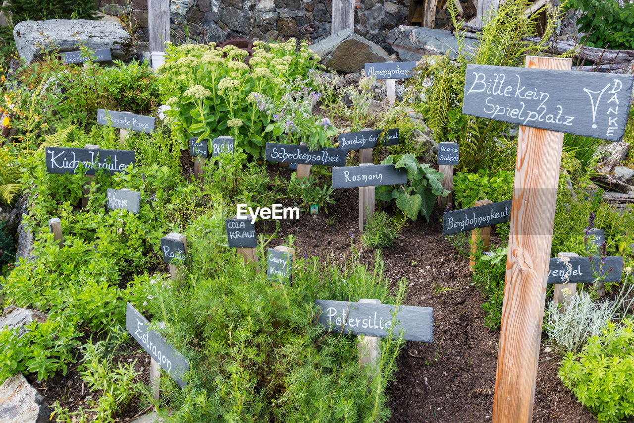 text, communication, sign, plant, western script, day, no people, information, information sign, nature, green color, guidance, freshness, healthy eating, food and drink, script, wood - material, outdoors, non-western script, agriculture, organic, herb
