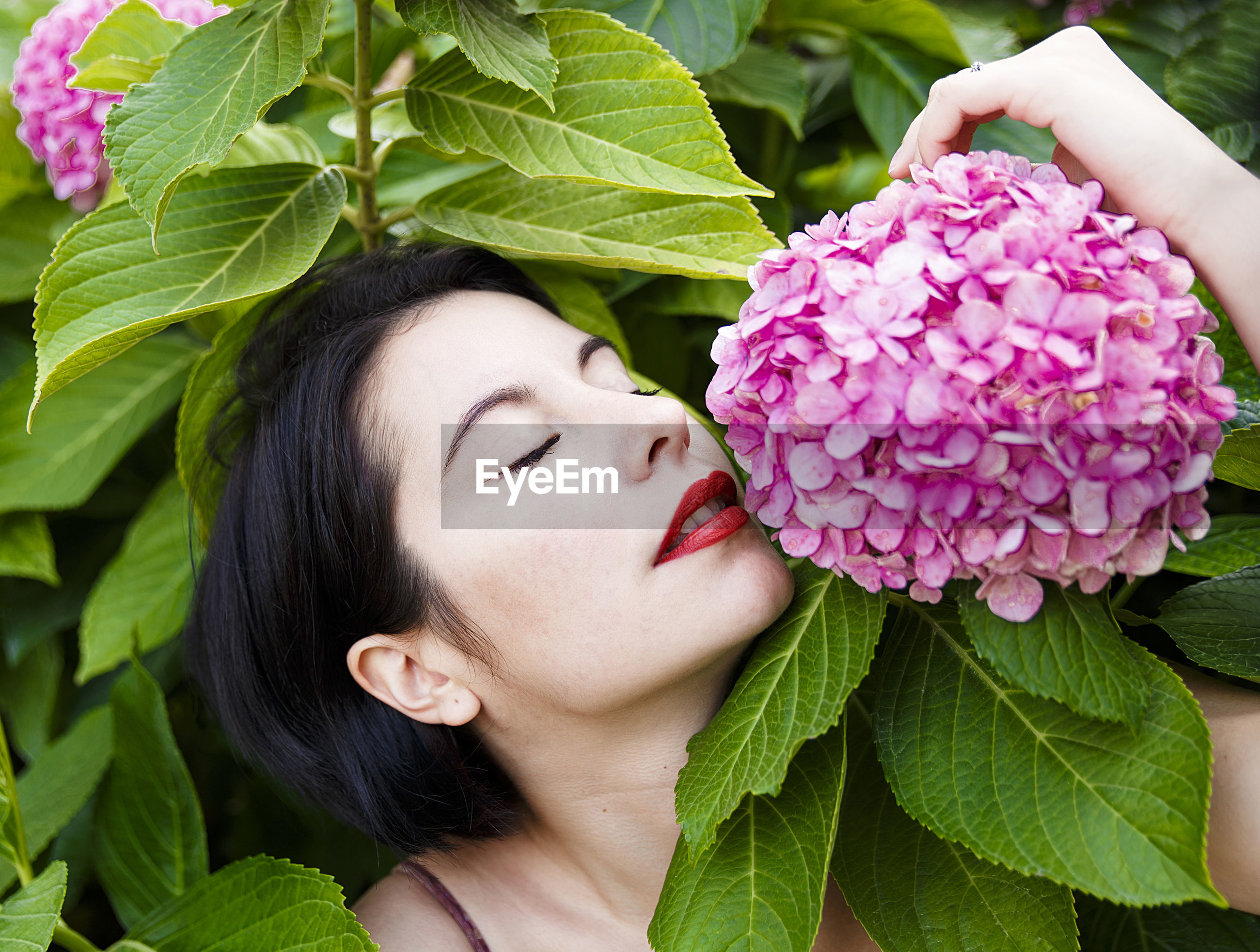 Close-up of woman with eyes closed smelling pink flowers