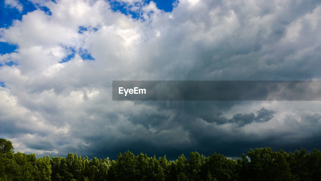 cloud - sky, beauty in nature, nature, tree, sky, day, scenics, no people, tranquility, outdoors, low angle view, storm cloud