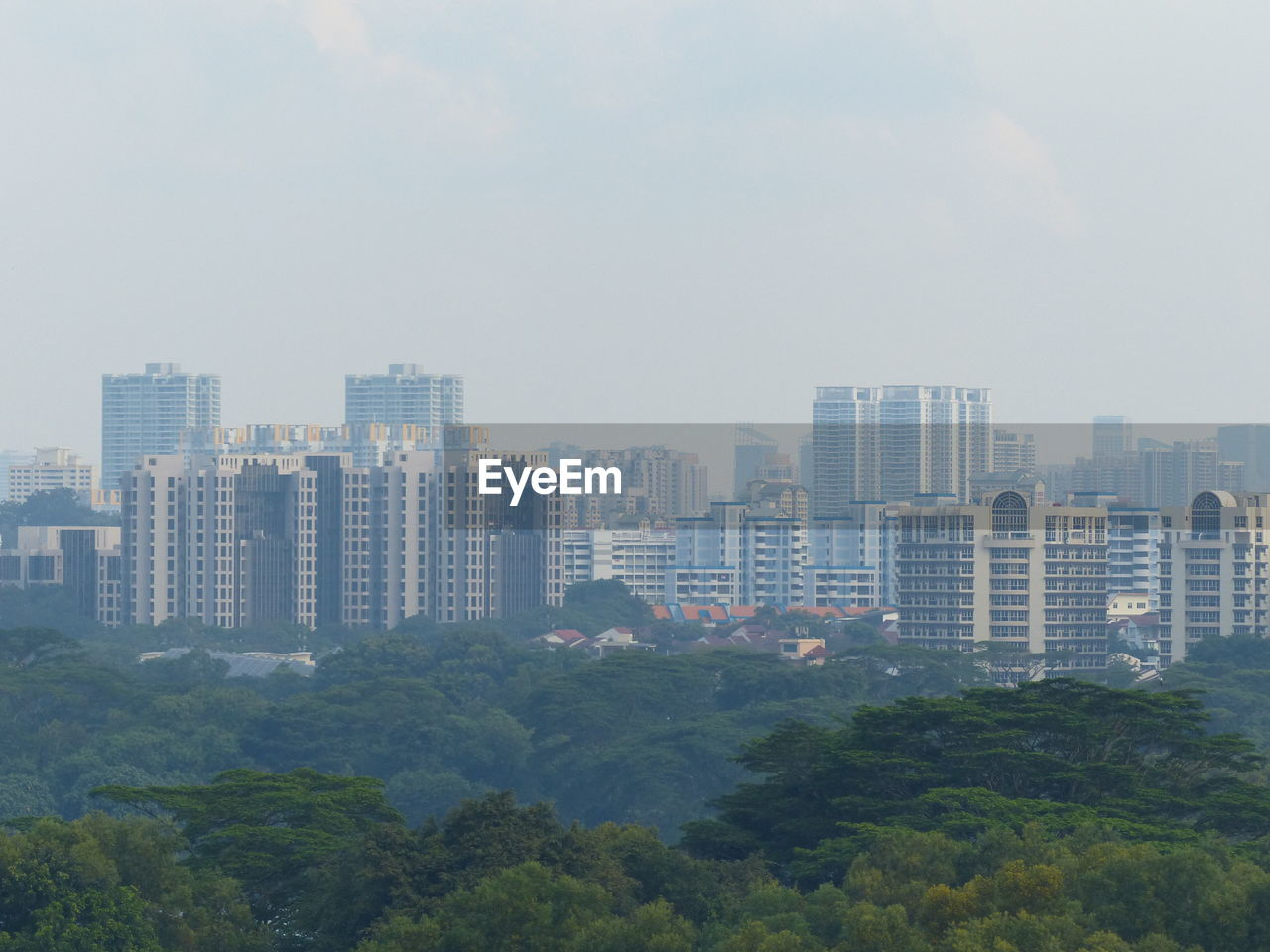 architecture, skyscraper, city, cityscape, building exterior, built structure, modern, no people, growth, tree, outdoors, sky, day, urban skyline, residential