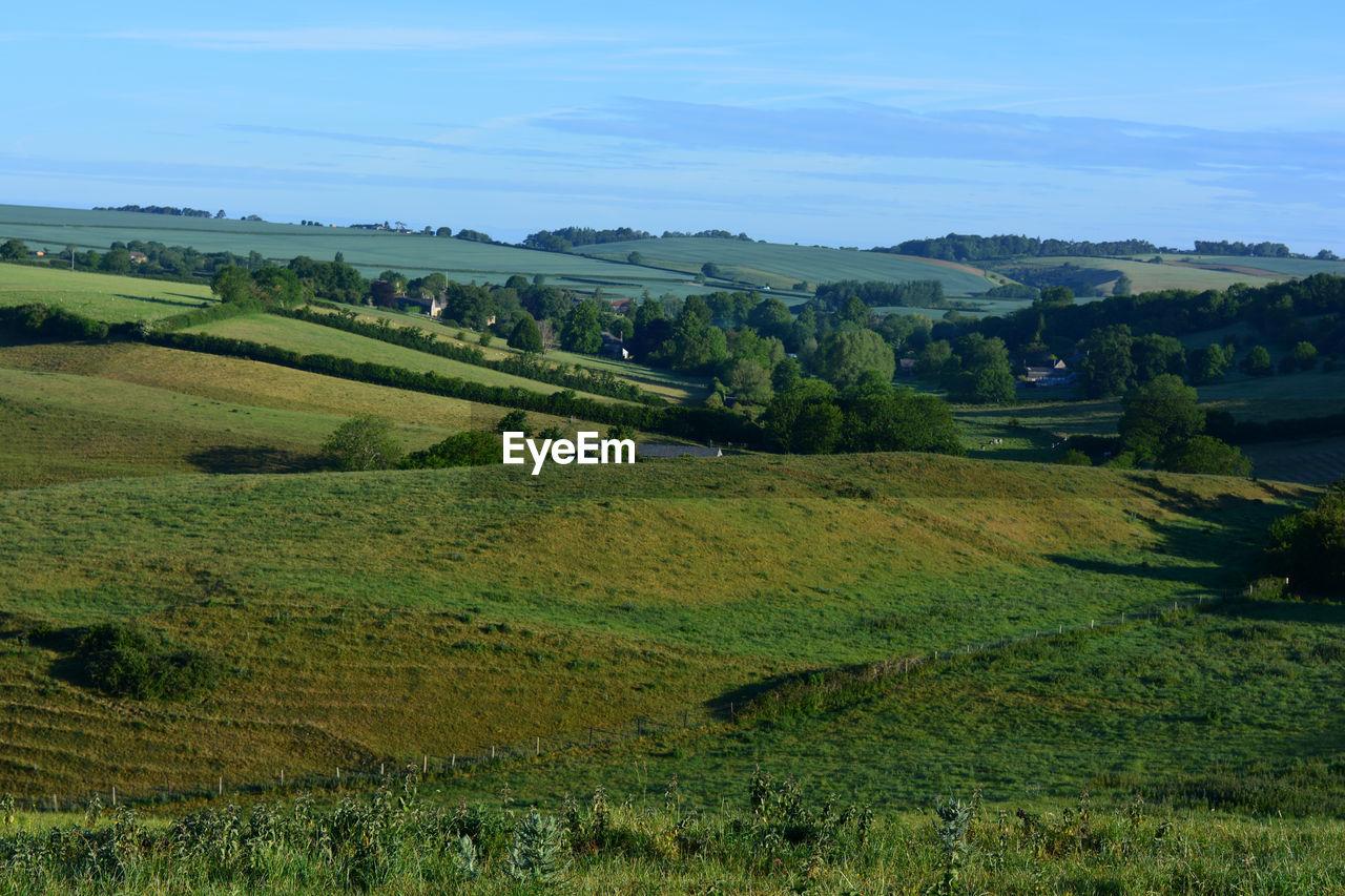 Countryside,  looking towards  poyntington from donkey lane trail sherborne, dorset, england