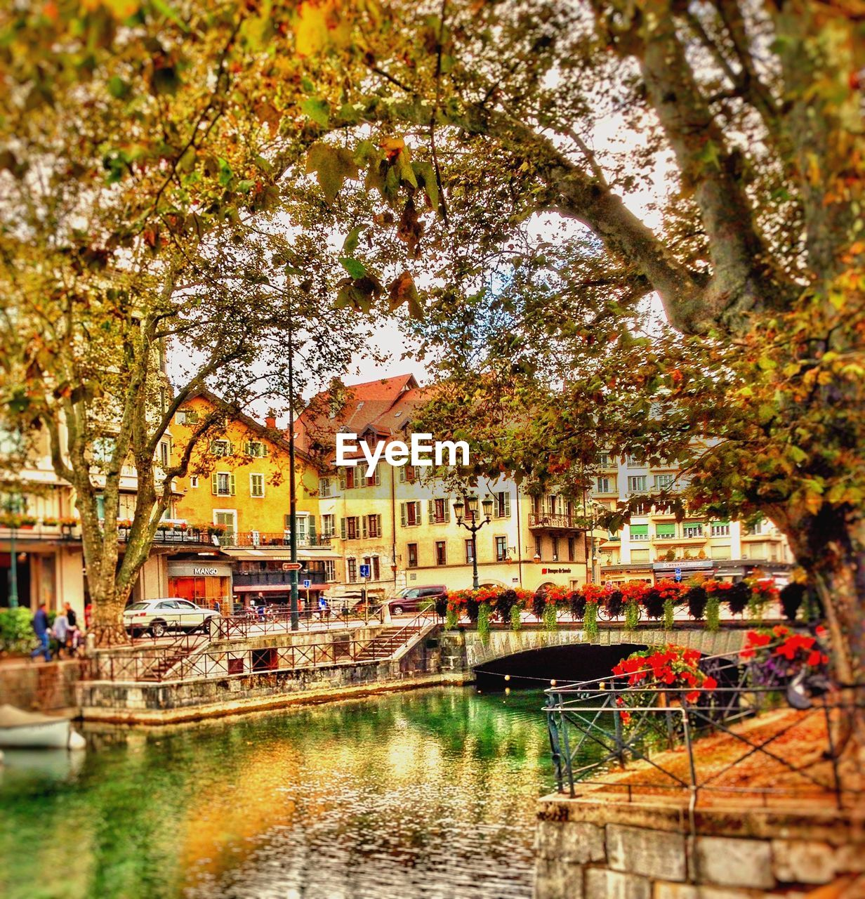tree, nautical vessel, water, architecture, building exterior, canal, reflection, built structure, transportation, outdoors, day, travel destinations, nature, moored, autumn, vacations, beauty in nature, no people, flower, city