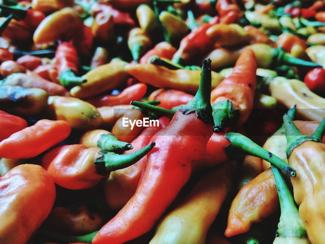 FULL FRAME SHOT OF CHILI PEPPERS FOR SALE