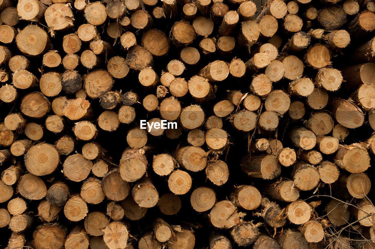 Full frame shot of a log pile