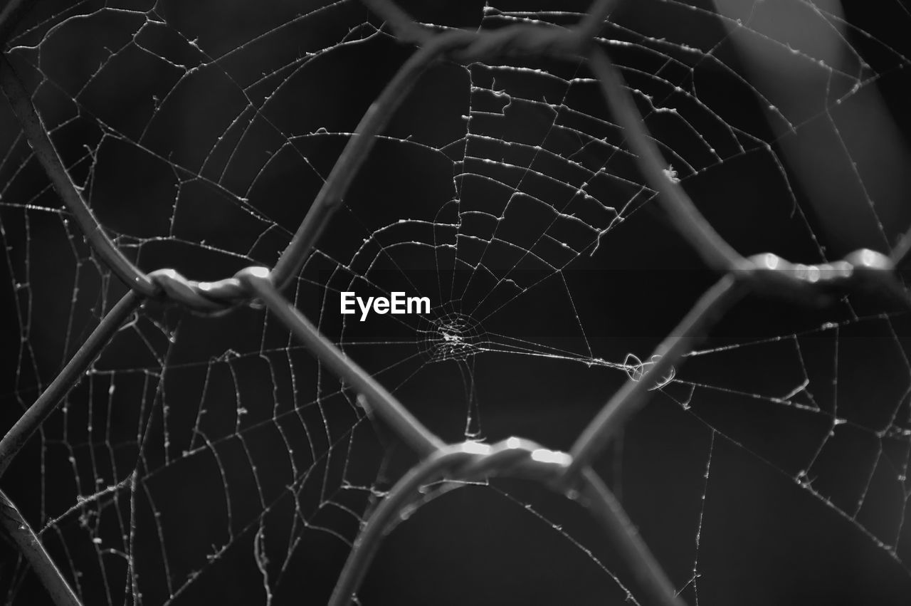 Close-up of spider web seen through chainlink fence