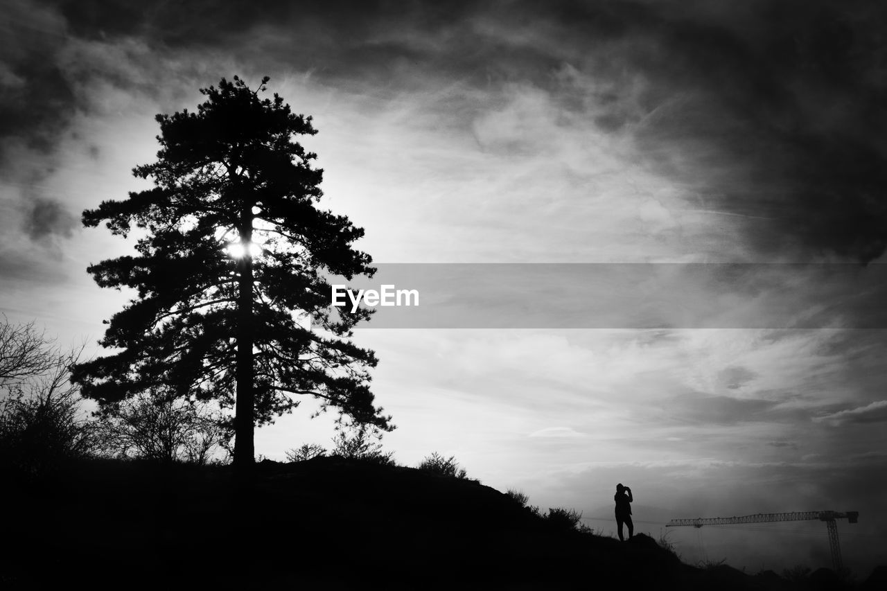 sky, tree, cloud - sky, silhouette, plant, beauty in nature, nature, tranquility, tranquil scene, scenics - nature, one person, low angle view, land, outdoors, standing, non-urban scene, sunset, real people, field, leisure activity