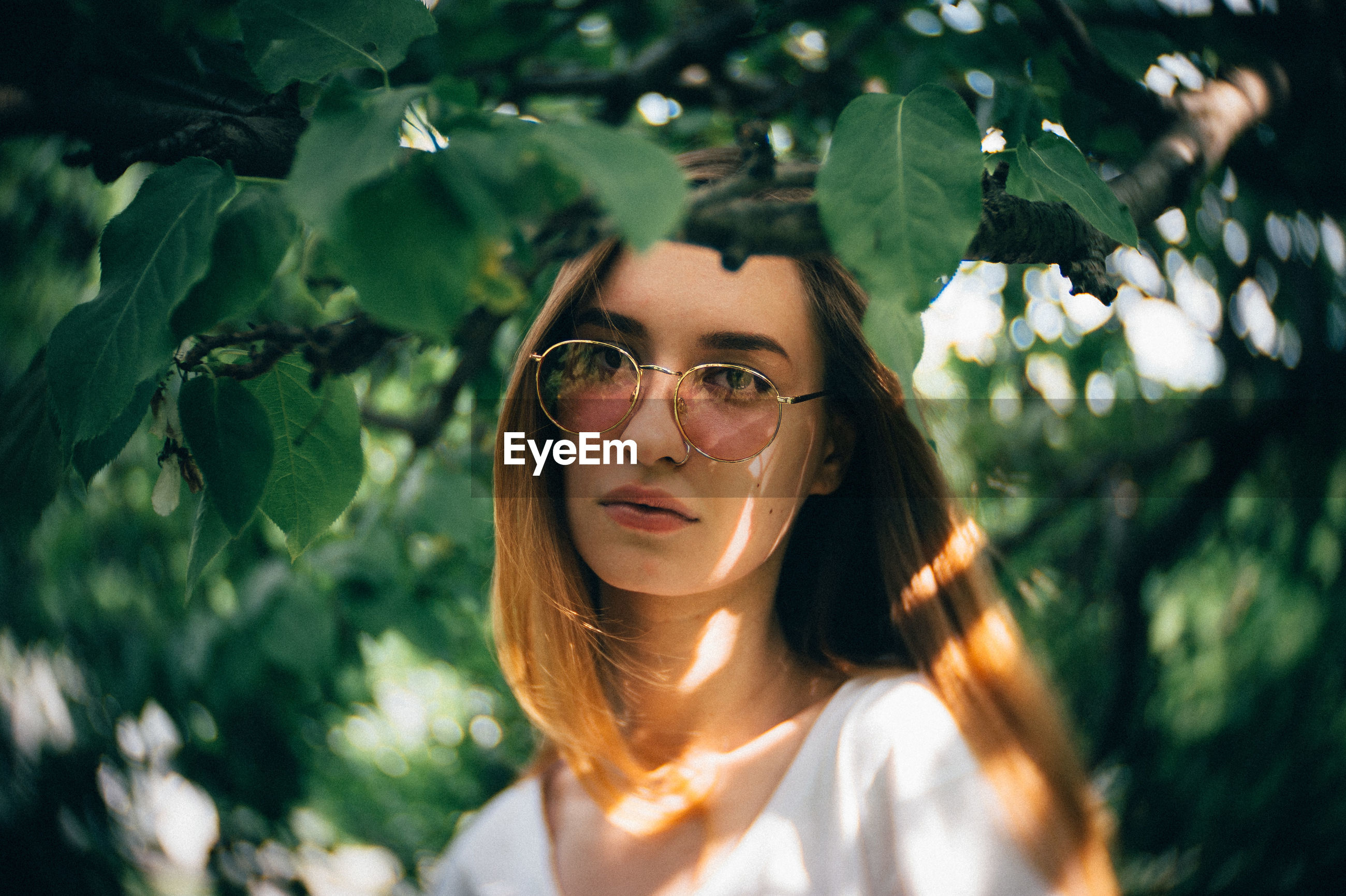 Portrait of young woman wearing sunglasses by leaves on branches