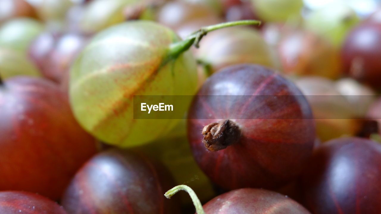 healthy eating, food and drink, wellbeing, food, fruit, freshness, close-up, still life, no people, full frame, day, selective focus, red, large group of objects, focus on foreground, grape, backgrounds, ripe, indoors, abundance