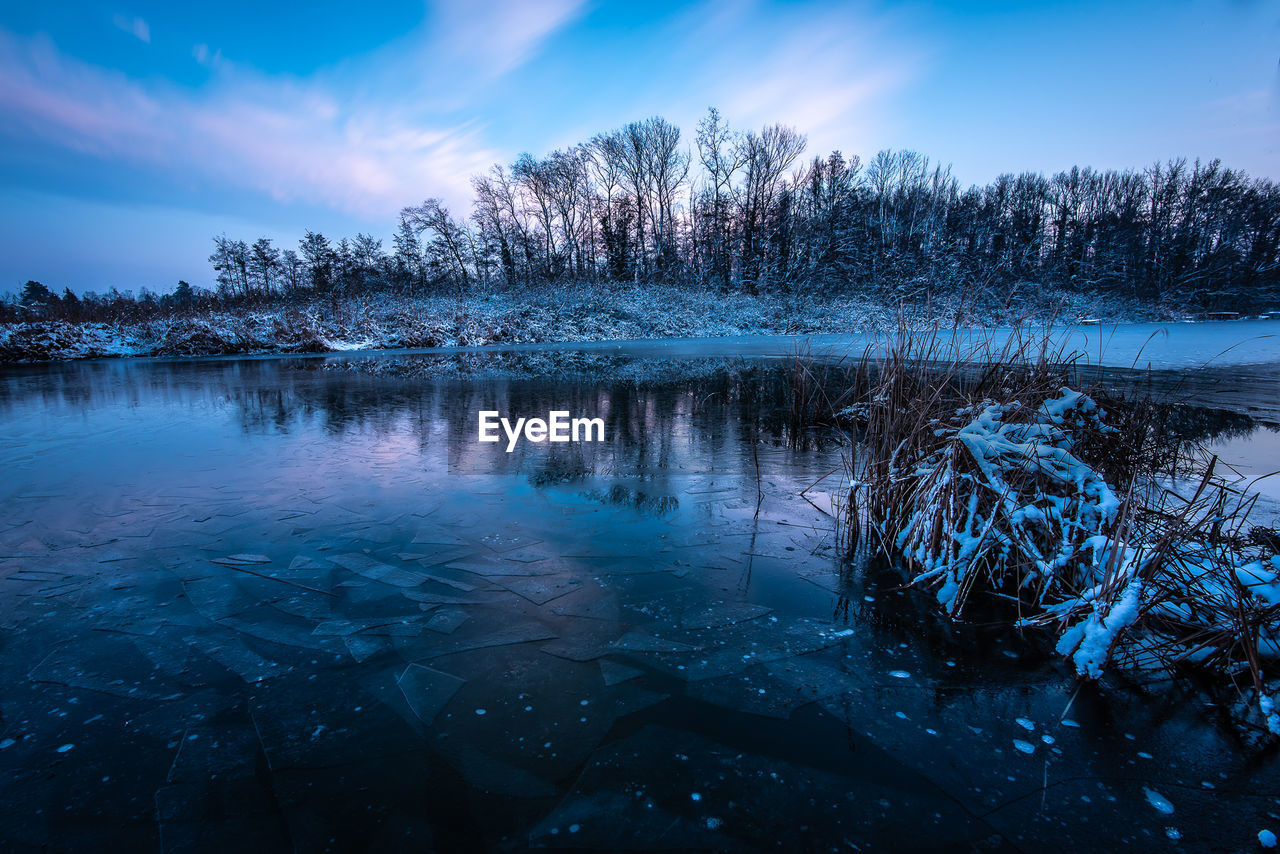 tree, water, sky, winter, cold temperature, beauty in nature, plant, tranquility, tranquil scene, scenics - nature, reflection, cloud - sky, nature, snow, no people, lake, non-urban scene, frozen, outdoors, snowcapped mountain