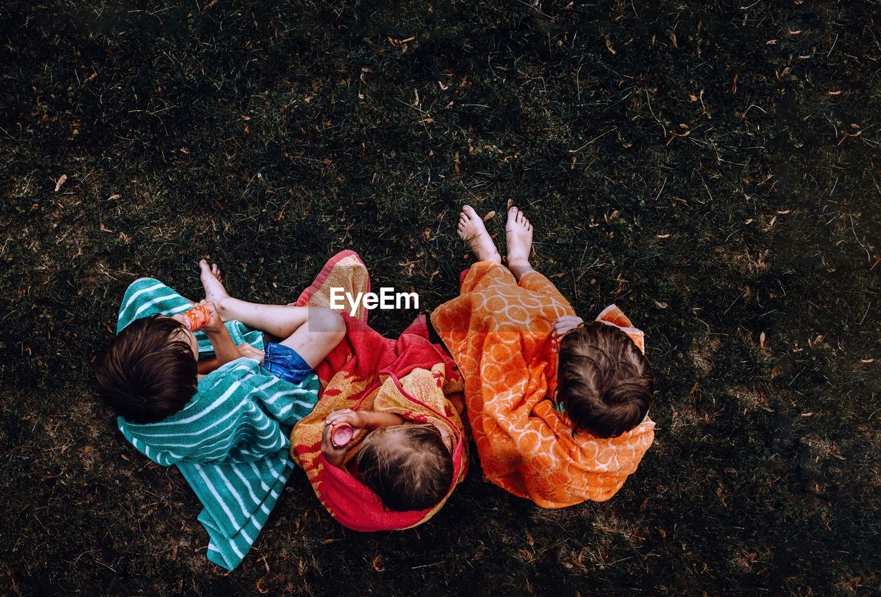Directly above shot of siblings sitting on grass