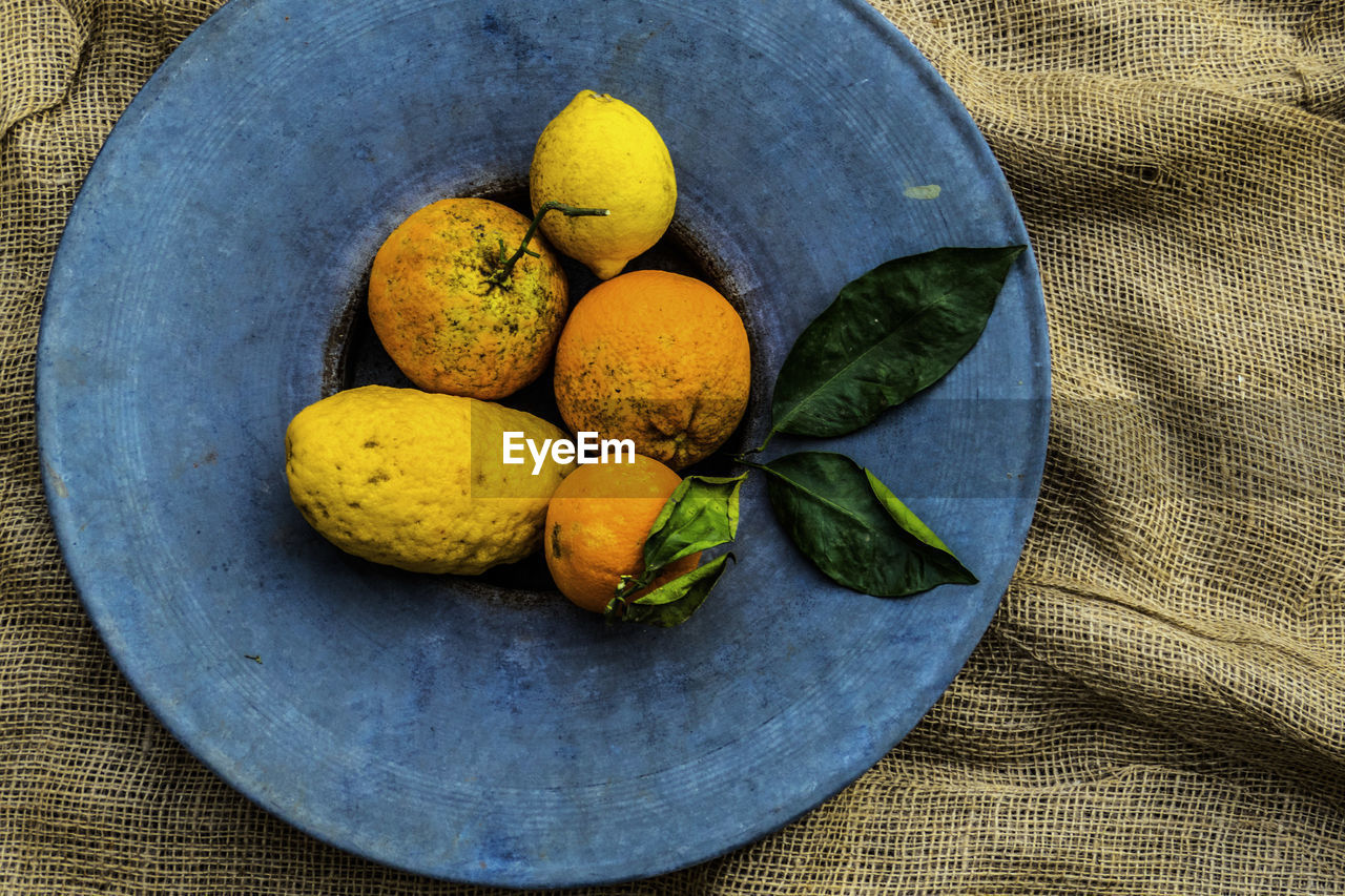 High Angle View Of Rotten Fruits In Plate