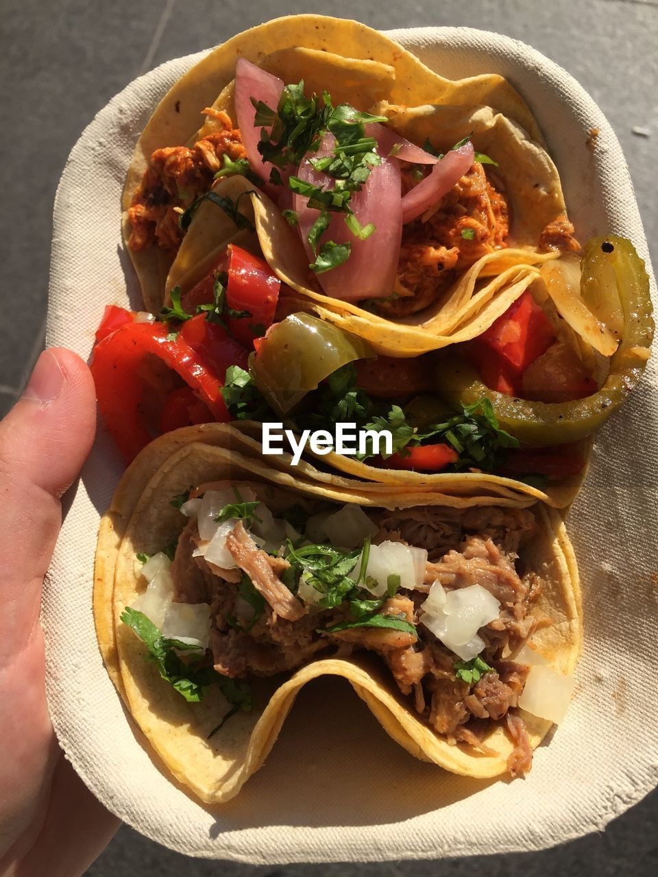 Cropped Hand Holding Tacos In Tray