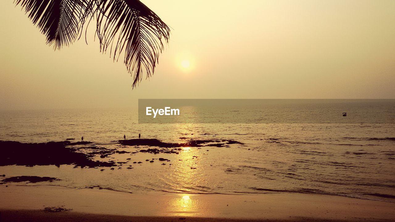 Scenic view of anjuna beach during sunset