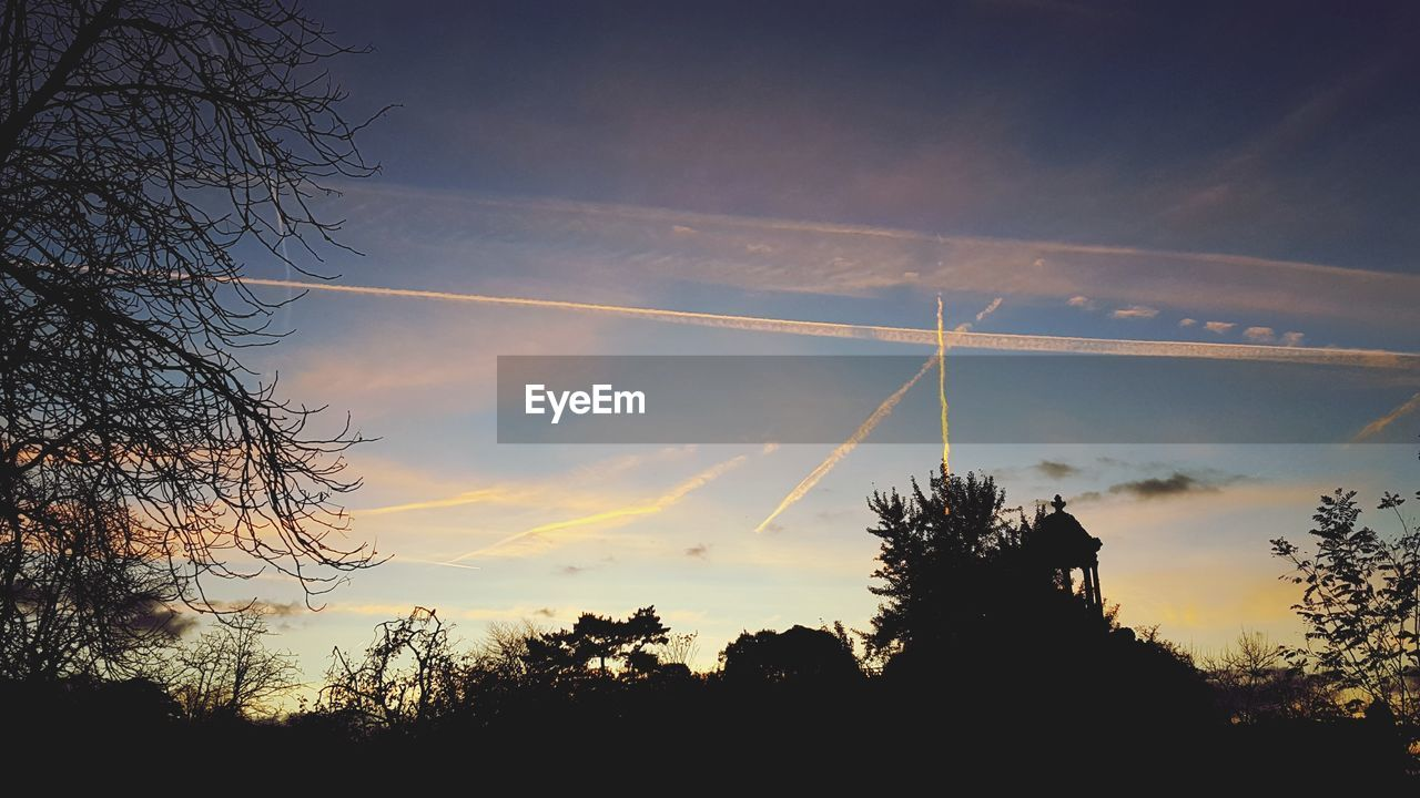 tree, silhouette, sunset, vapor trail, nature, sky, beauty in nature, low angle view, scenics, tranquil scene, contrail, no people, tranquility, outdoors, bare tree, branch, landscape, day