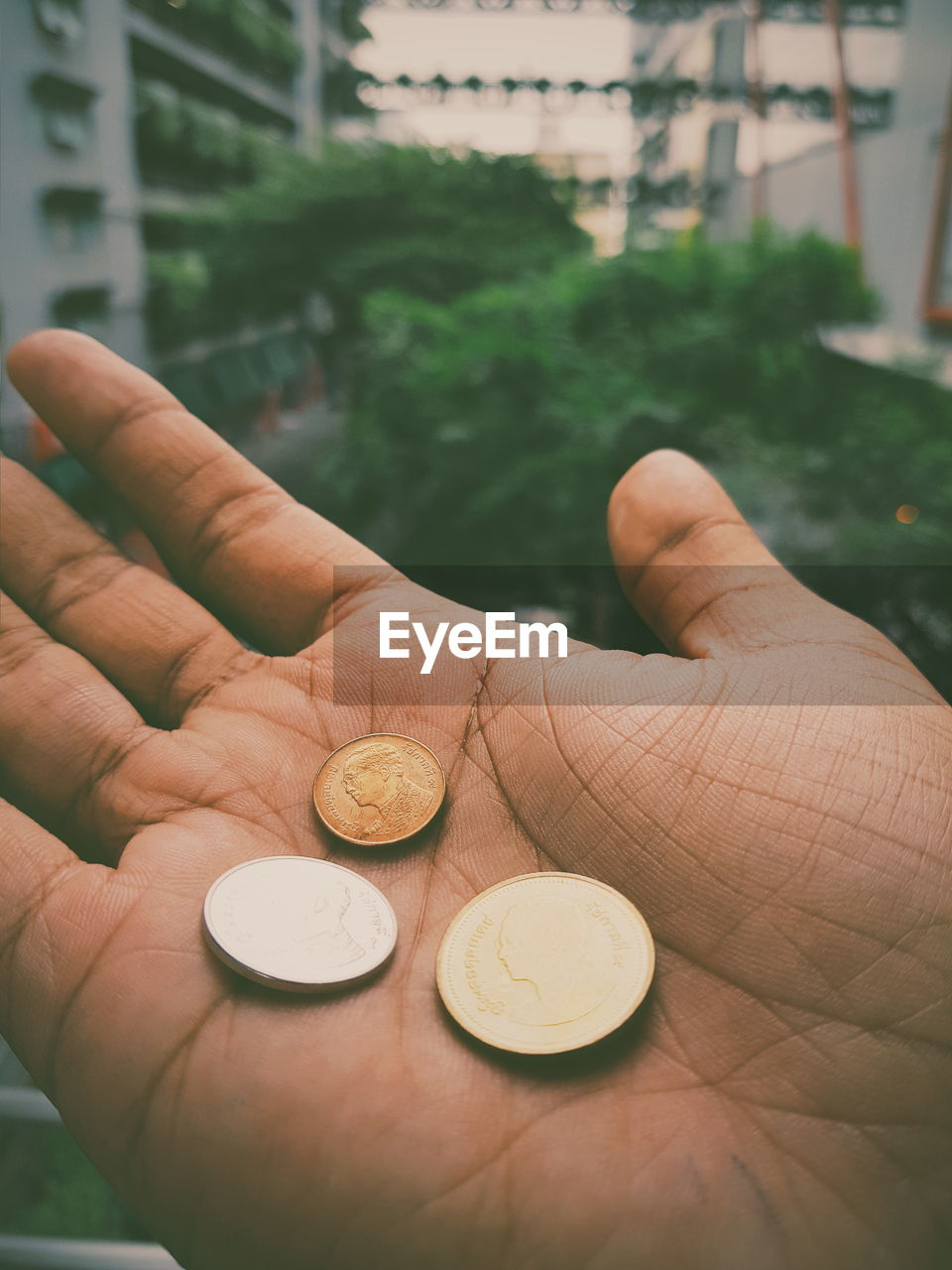 human hand, hand, coin, one person, holding, human body part, finance, currency, business, finger, real people, human finger, unrecognizable person, body part, wealth, close-up, finance and economy, savings, business finance and industry, economy, human limb