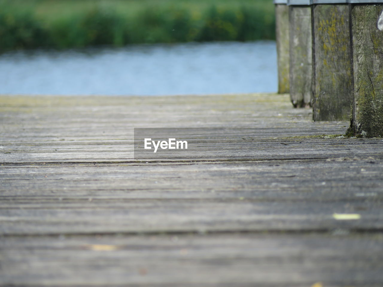 wood - material, selective focus, day, no people, outdoors, tree, nature, tranquility, the way forward, wood, direction, close-up, land, diminishing perspective, textured, surface level, tranquil scene, footpath, water, plant