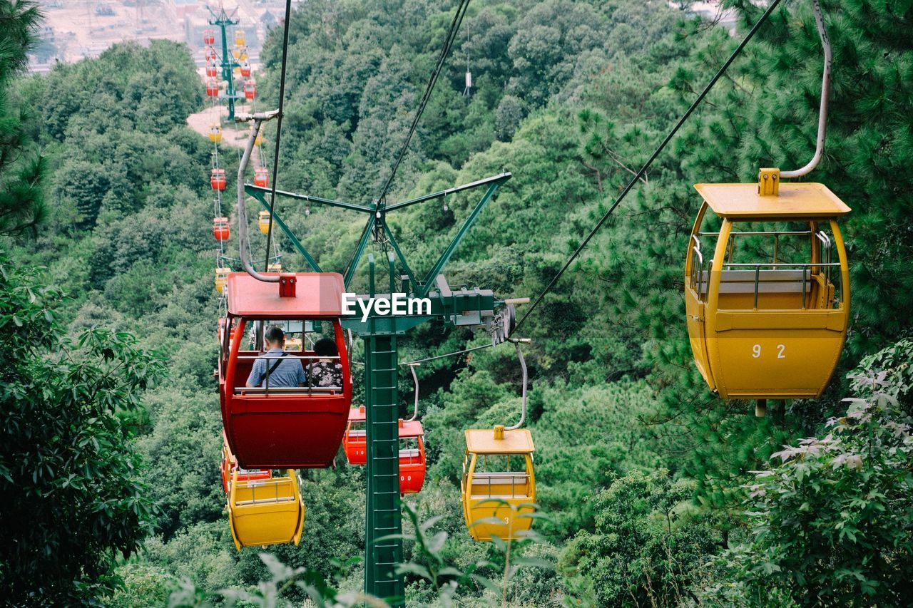 High Angle View Of Overhead Cable Cars Over Forest